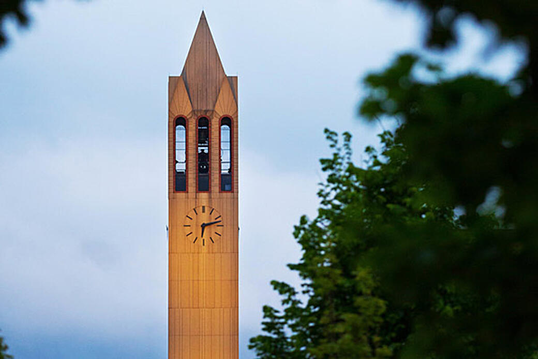 campanile thru trees